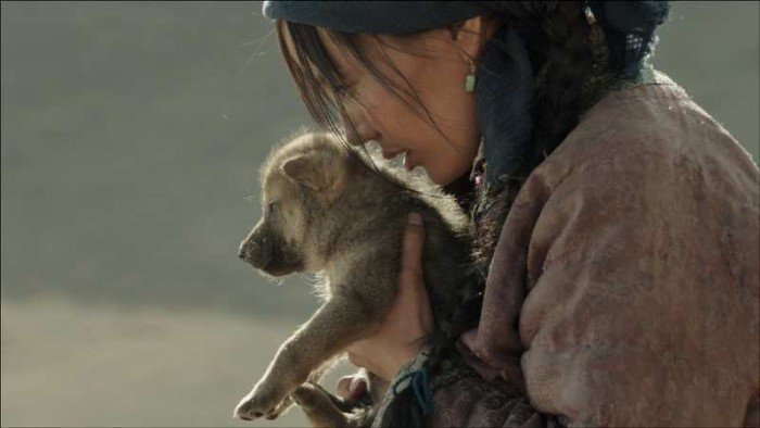 WOLF TOTEM: CONTEST AND AUDIO EXCERPT