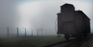 One-day-in-Auschwitz-960X5401_image16x9